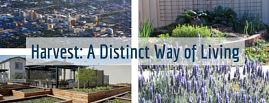 Welcome to Harvest at Damonte Ranch: A Distinct Way of Living